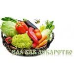 Елена Светлая: Кулинарные рецепты