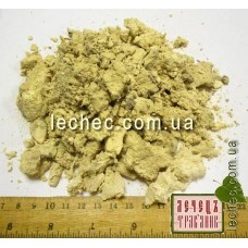 Агарикус, лиственничная губка (Laricis fungus)