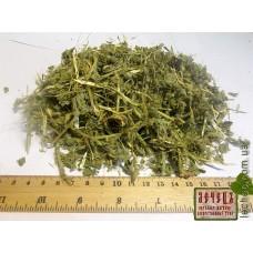 Алтей лекарственный трава (Althaea officinalis)