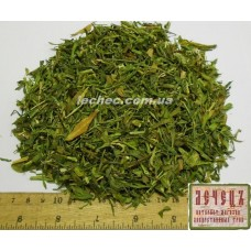 Галега лекарственная, козлятник трава(Galega officinalis)
