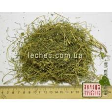 Дымянка лекарственная трава (Fumaria officinalis)