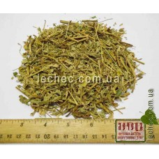 Герань луговая трава (Geranium pratense)