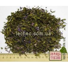 Иван-чай капорский листовой (Chamaenerion angustifolium (L.)