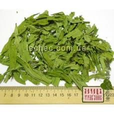 Иван-чай лист зеленый (Chamaenerion angustifolium (L.)