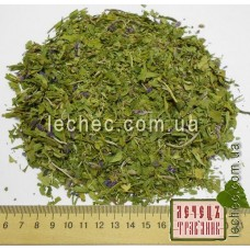 Иван-чай лист Украина (Chamaenerion angustifolium (L.)