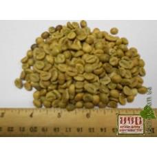 Зеленый кофе (Арабика Бразилия)Viridi capulus (arabica Brazil). ТОВАРА НЕТ В НАЛИЧИИ!!!