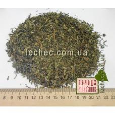 Зеленый чай и марокканская мята
