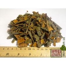 Крушина ломкая кора (Frangula alnus Mill.)