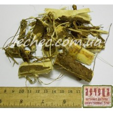 Акация белая корень (Acacia albida)