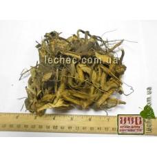Девясил высокий корень (Inula helenium)