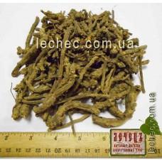 Герань кроваво-красная корень (Geranium radice)