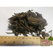 Бадан толстолистный лист (Bergenio crassifolia (L.). ТОВАРА НЕТ В НАЛИЧИИ!!!