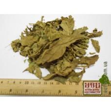 Вахта трехлистная (трифоль) лист (Menyanthes trifoliata L.)
