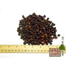 Боярышник плод (Crataegus)