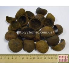 Черный орех зеленая кожура (Juglans nigra)