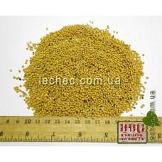 Горчица белая семена для посева (Sinapis alba)