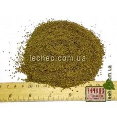 Люцерна семена для посева (Medicago)