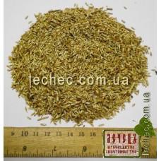 Василек семена для посева (Centaurea). ТОВАРА НЕТ В НАЛИЧИИ!!!