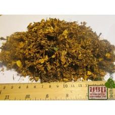 Азалия понтийская цветок (Ponticam azalea flos)