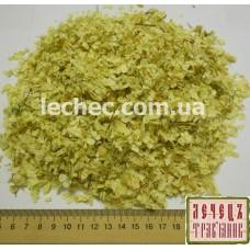 Гортензия древовидная цвет (Hydrangea arborescens)