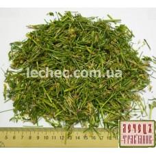 Золототысячник обыкновенный трава (Centaurium erythraea Rafn.)
