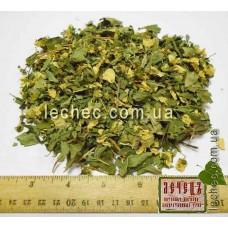 Жасмин (чубушник) цвет с листом ( Jasminum )