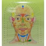 Обзор Мастер-класса на тему «Визуальная диагностика человека»