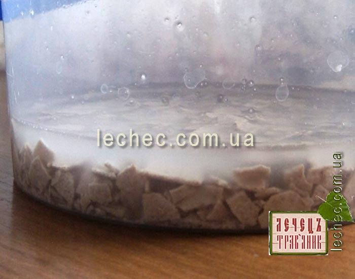 Восстанавливаем ржаную закваску для хлеба