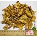 Лисичка, гриб сушеный (Cantharellus cibarius)