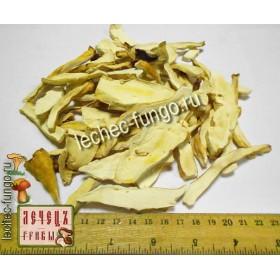 Трутовик серно-желтый гриб резаный ( Laetiporus sulphureus)