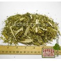 Белокудренник трава (Ballota)