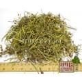 Горицвет кукушкин трава (Silene flos-cuculi)
