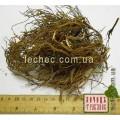 Шикша черная, водяника черная, вороника трава с корнем (Empetrum nigrum)