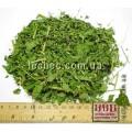 Астрагал сладколистный трава  (Astragalus glycyphyllos)
