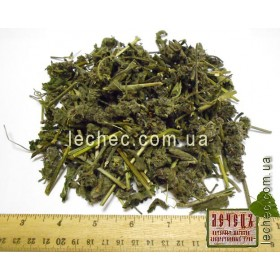 Буквица лекарственная трава (Stachys officinalis)