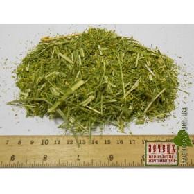 Донник лекарственный трава (Melilotus officinalis (l.)