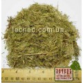 Кипрей мелколистный трава (Epilobii herba).