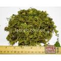 Любисток лекарственный трава (Levisticum officinale Koch.)