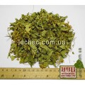 Вербейник обыкновенный трава (Lysimachia vulgaris)