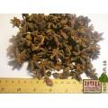 Бадьян (Anisum stellatum)