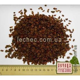 Барбарис красный плод (Berberis)