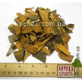 Черешня, вишня птичья кора (Cerasus avium Moench)