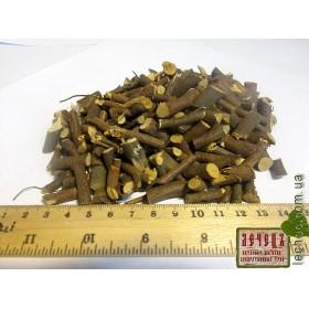 Багульник болотный корень (Ledum palustre)