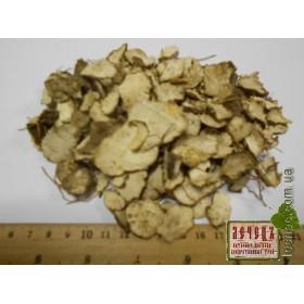 Диоскорея кавказская корень (Dioscorea caucasica Lypaky). ТОВАРА НЕТ В НАЛИЧИИ!!!