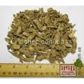 Лаконос американский корень  (Phytolacca americana)
