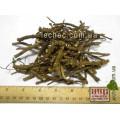 Мыльнянка лекарственная корень (Saponaria officinalis)