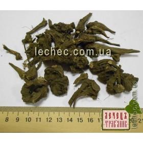 Аконит джунгарский корень (Aconitum soongaricum)