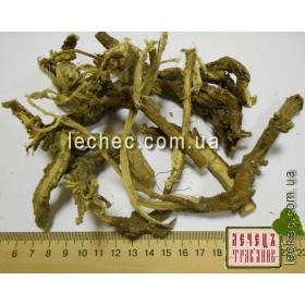 Астрагал шерстистоцветковый корень (Astragalus dasyanthus Pall.). ТОВАРА НЕТ В НАЛИЧИИ!!!