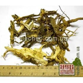 Борщевик обыкновенный корень (Heracleum sphondylium)