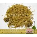 Ластовень лекарственный корень (Vincetoxicum)